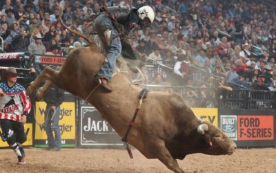 Some Of The World's Most Dangerous Sports